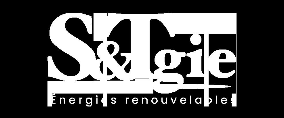 logo stgie blanc new